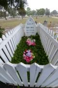 Ben Hall's Grave